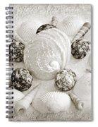 North Carolina Circle Of Sea Shells Bw Spiral Notebook