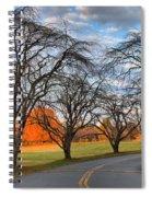North Carolina Sloan Park Sunset Spiral Notebook