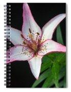 North Star 8 Spiral Notebook