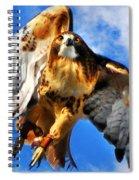 North Wind Spiral Notebook