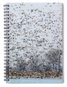Northbound Spiral Notebook