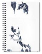 Northern Bluebells Spiral Notebook