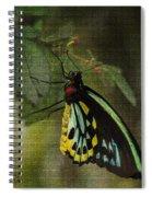 Northern Butterfly Spiral Notebook