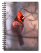 Northern Cardinal Dominent Male Spiral Notebook