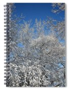 Northern Colors Spiral Notebook