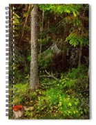 Northern Forest 1 Spiral Notebook