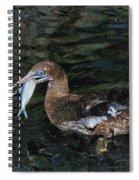 Northern Gannet Feeding Spiral Notebook