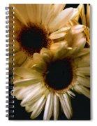 Northern Renaissance Rustic Spiral Notebook