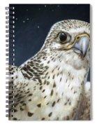 Northern Star Spiral Notebook