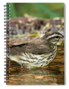 Northern Waterthrush Spiral Notebook