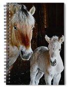 Norwegian Fjord Horse And Colt Digital Art Spiral Notebook
