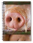 Nosey Spiral Notebook