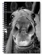 Nosy Bw Spiral Notebook