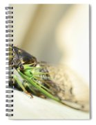 Not A Cute Bug Spiral Notebook