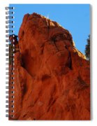 Not Alone Spiral Notebook