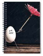 Not Eggs-actly Great Weather Spiral Notebook