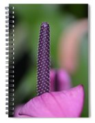 We Are One- Serenity Spiral Notebook