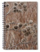 Not So Prickly Spiral Notebook