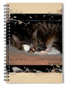 Not Tonight Dear... - Featured In Comfortable Art Group Spiral Notebook