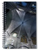 Notre Dame Ceiling In Blues Spiral Notebook