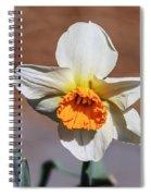 Nova Spiral Notebook