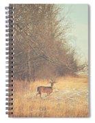 November Deer Spiral Notebook