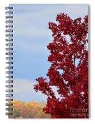 November Red Spiral Notebook