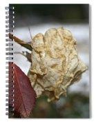 November Snow Rose Spiral Notebook