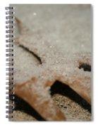 November Sparkle Spiral Notebook