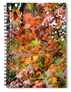 November's Maples Spiral Notebook