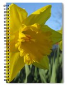 Now That's A Daffodil Spiral Notebook
