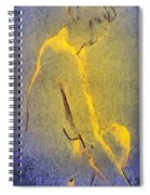 Nude Iv Spiral Notebook