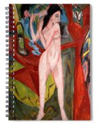 Nude Woman Combing Her Hair Spiral Notebook