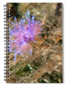 Nudibranch 2 Spiral Notebook