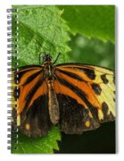 Numata Longwing Butterfly Spiral Notebook