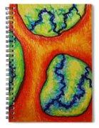 Number 6 Spiral Notebook