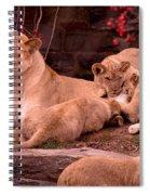 Nurturing Spiral Notebook