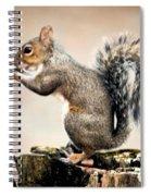 Nutcracker Spiral Notebook