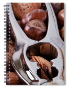 Nutcracker With Nuts Closeup Spiral Notebook