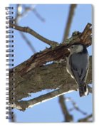 Nuthatch Getting To The Good Stuff Spiral Notebook