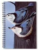 Nuthatch Pair Spiral Notebook