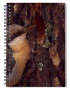 Nuthatch Up Close Spiral Notebook