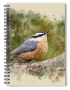 Nuthatch Watercolor Art Spiral Notebook