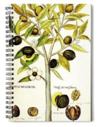 Nutmeg Plant Botanical Spiral Notebook