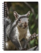 Nuts Please Spiral Notebook
