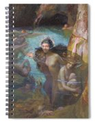 Nymphs At A Grotto Spiral Notebook