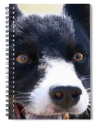 O Happy Day Spiral Notebook