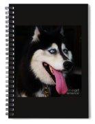 O M G Spiral Notebook