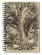 Oak Alley Backyard Seoia Spiral Notebook