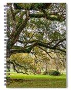 Oak Alley Reverie Spiral Notebook